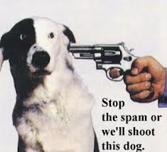 Image of spam.